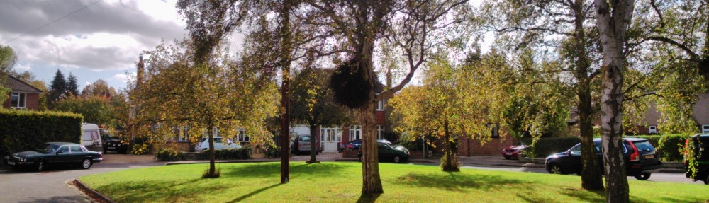 Wolvercote Neighbourhood Forum